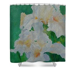 White Irises Original Oil Painting Iris Cluster Beautiful Floral Art Shower Curtain by Elizabeth Sawyer