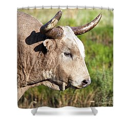 White Lightning   Shower Curtain