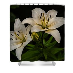 White Lilies Shower Curtain by Davorin Mance