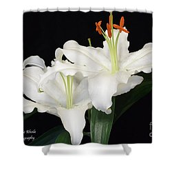 Shower Curtain featuring the photograph White  Lilies by Jeannie Rhode