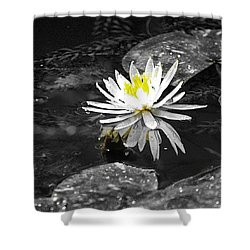 White Lilly Shower Curtain