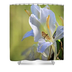 Shower Curtain featuring the photograph White Lily And The Skipper by Rosalie Scanlon