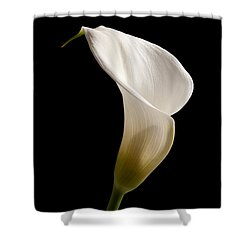 White Lily Shower Curtain by Amanda Elwell