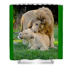 How About A Nibble My Love Shower Curtain by Venetia Featherstone-Witty
