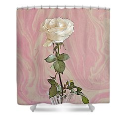 Shower Curtain featuring the photograph White Long Stemmed Rose by Sandra Foster