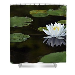 Shower Curtain featuring the photograph White Lotus Lily Flower And Lily Pad by Glenn Gordon