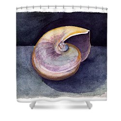 White Nautilus Shower Curtain