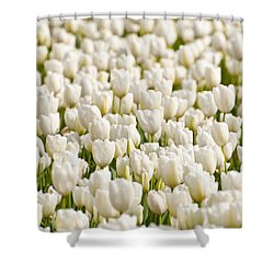 Shower Curtain featuring the photograph White Ocean by Sabine Edrissi