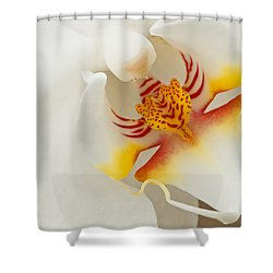 White Orchid 2 Shower Curtain