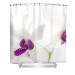 White Orchids Shower Curtain by Bradley R Youngberg