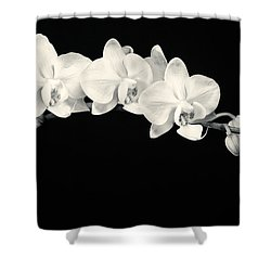 White Orchids Monochrome Shower Curtain by Adam Romanowicz