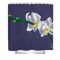 White Orchids On Dark Blue Shower Curtain by Laura Forde