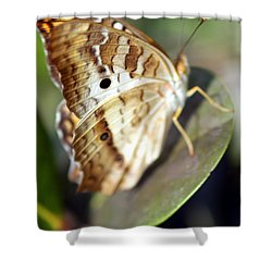 Shower Curtain featuring the photograph White Peacock Butterfly by Greg Allore
