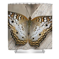 White Peacock Butterfly Shower Curtain by Judy Whitton