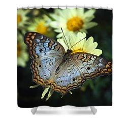 White Peacock Butterfly On A Daisy Shower Curtain by Saija  Lehtonen