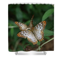 White Peacock Butterflies Shower Curtain