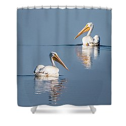 Shower Curtain featuring the photograph White Pelicans by Patti Deters