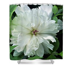 Shower Curtain featuring the photograph White Peonese by Verana Stark