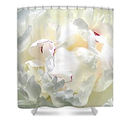 White Peony Shower Curtain by Will Borden