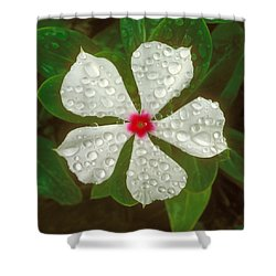 Shower Curtain featuring the photograph White Periwinkle by Mark Greenberg