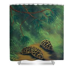 White Pine  And Cones Shower Curtain