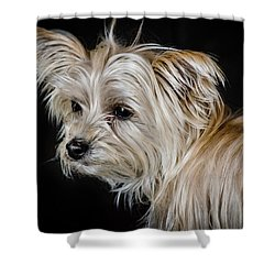 White Puppy Shower Curtain