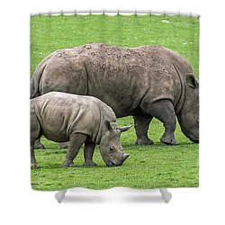 White Rhino 8 Shower Curtain