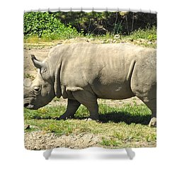 White Rhinoceros Grazing Shower Curtain by CML Brown