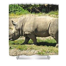 White Rhinoceros Grazing Shower Curtain