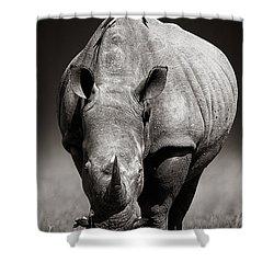White Rhinoceros  In Due-tone Shower Curtain