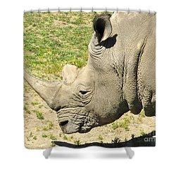 White Rhinoceros Portrait Shower Curtain by CML Brown