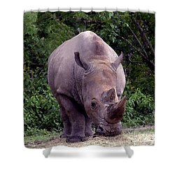 White Rhinoceros Water Coloring Shower Curtain
