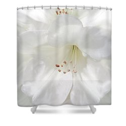 White Rhododendron Flowers Shower Curtain by Jennie Marie Schell