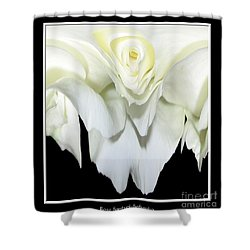 White Rose Abstract Shower Curtain by Rose Santuci-Sofranko