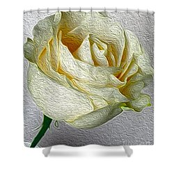 Shower Curtain featuring the photograph White Rose In Oil Effect by Nina Silver