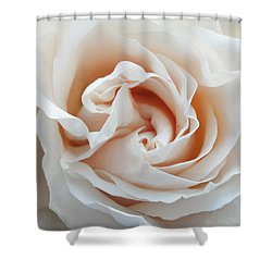 White Rose Shower Curtain by Tiffany Erdman