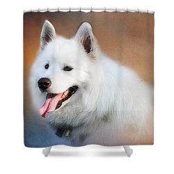 White Samoyed Portrait Shower Curtain by Eleanor Abramson