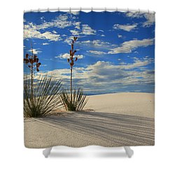 White Sands Afternoon 2 Shower Curtain