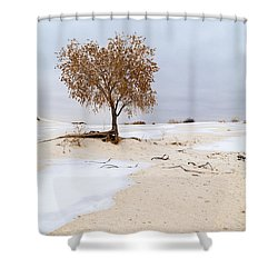 White Sands Lone Tree Shower Curtain by Brian Harig