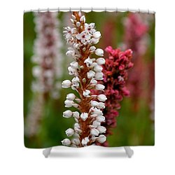White Stalk Flower Shower Curtain