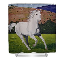 Shower Curtain featuring the painting White Stallion by Norm Starks