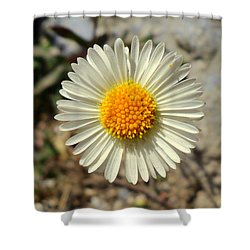 White Wild Flower Shower Curtain