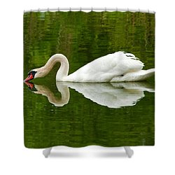 Shower Curtain featuring the photograph Graceful White Swan Heart  by Jerry Cowart