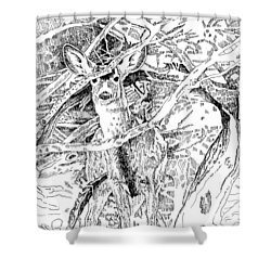 White-tail Encounter Shower Curtain