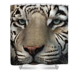 White Tiger - Up Close And Personal Shower Curtain