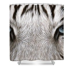 White Tiger Eyes Painting Shower Curtain