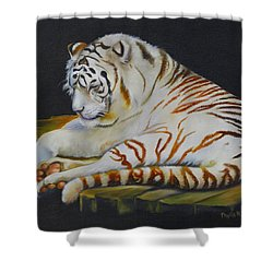 White Tiger Sleeping Shower Curtain