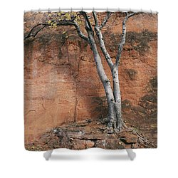 White Tree And Red Rock Face Shower Curtain