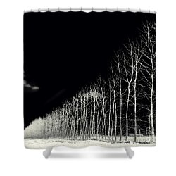 White Trees Shower Curtain by Stelios Kleanthous