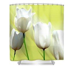 White Tulips Shower Curtain by Ben and Raisa Gertsberg